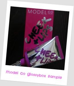 Model Co Cheek + Lips